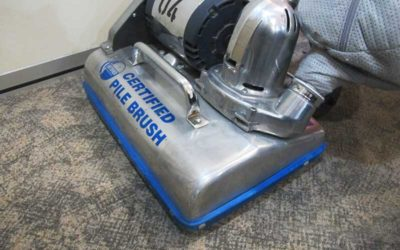 5 Steps to Carpet Cleaning & Restoration